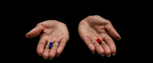 Hands Of A Black Woman Offerin...