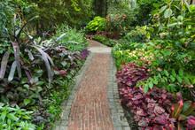 A Path Leads Through A Beautif...
