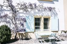 Blue Window Shutters With Wist...