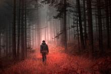 Man Walking Alone In Magical D...