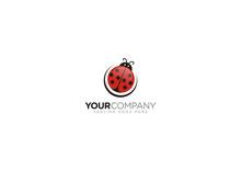 Vector Logo Design Beetle Concept Editable