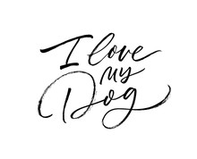 I Love My Dog Vector Brush Pen Lettering. Hand Drawn Modern Calligraphy Card. Positive And Inspirational Background.