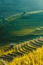 Scenic View Of Mu Cang Chai District