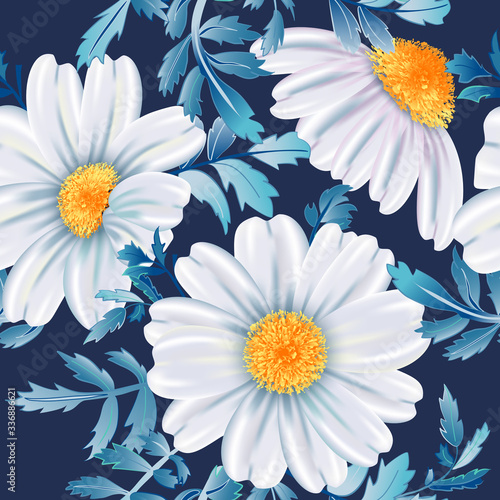 Fototapeta White chamomile flower close up on dark blue background. obraz
