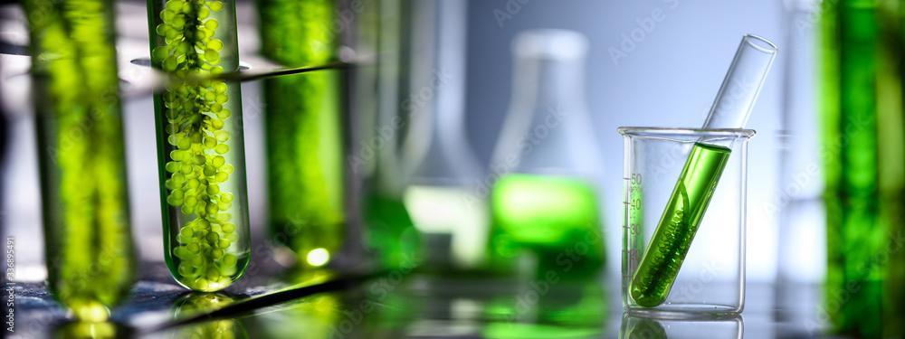 Fototapeta Photobioreactor in laboratory of algae fuel, biofuel industry project, Algae research in industrial laboratories for medicine