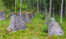 Old Anti-tank Obstacles Near T...