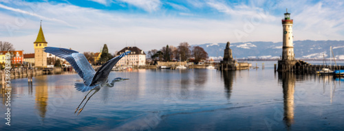 Photo Graureiher fliegt im Hafen von Lindau Bodensee