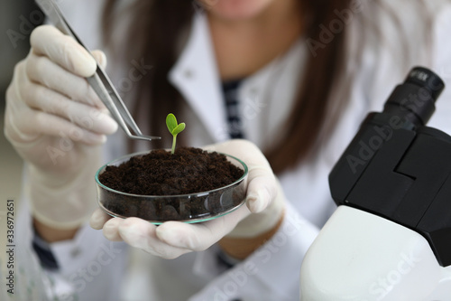 Close-up of biologists hand in protective gloves holding plant with root above petri dish with soil Canvas Print