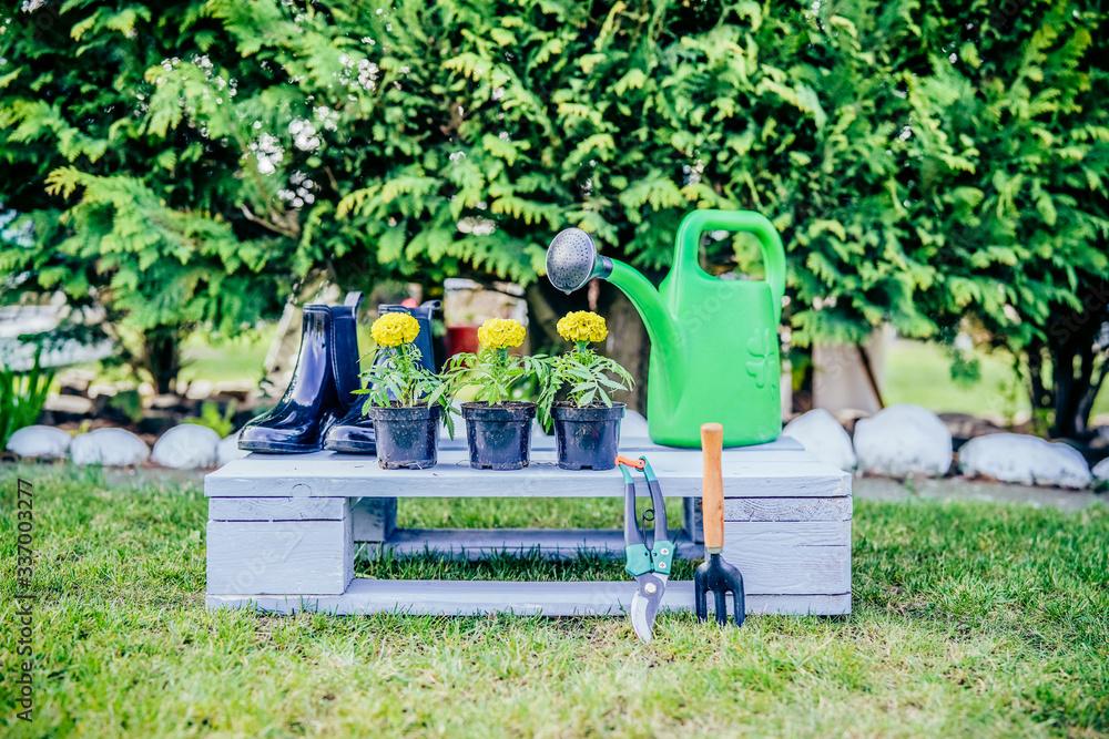 Fototapeta Wiosenne porządki w ogrodzie