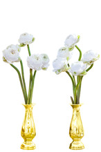 White Lotus Flowers Arranged In A Golden Vase. Worship For Buddhist.  Isolated Wtih Clipping Path.