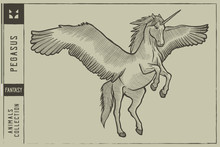 Pegasus Vector Illustration - ...