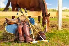 Horse Polo Concept. Accessorie...
