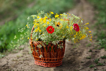 A Basket Of Bright Wildflowers Stands On The Road. Close Up.