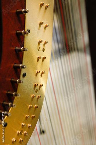 Fényképezés Dettaglio di un arpa