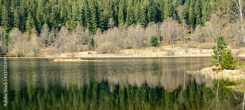 Obraz Schwarzwald Landschaft - Spiegelung des Waldes im wunderschönen Sankenbachsee ( Karsee )in Baiersbronn - fototapety do salonu
