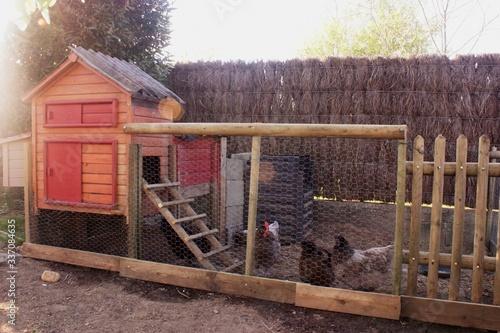 Fotografiet poulailler en bois ,avec ses poules