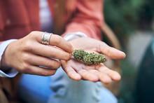 Womans Hands Holding Cannabis Flower