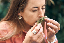 Woman Smelling A Cannabis Flower