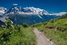 Tour Du Mont Blanc Trail Leadi...