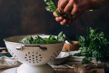 Fresh Ingredients For Pesto