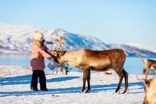 Little Girl Feeding Reindeer