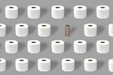 Toilet Paper Rolls With And Empty Roll, Toilet Roll Holder On A Grey Background