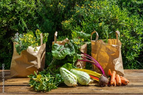 Obraz na plátně Des légumes d'hiver prêts à être répartis et vendus dans des emballages en papie