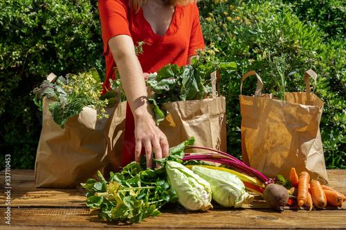 Une jeune femme en robe rouge remplit un des trois sacs de légumes étalés sur un Canvas Print