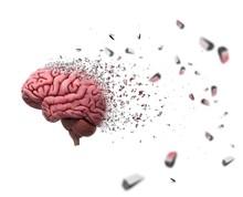 Brain Decomposing