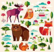 Collection Of Wild Animals And...