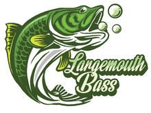 Illustration Of A Bass With Fi...