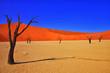 Leinwanddruck Bild - sossusvlei namibia