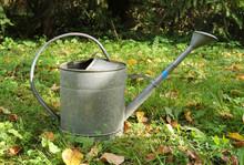 Metal Watering Can In The Gard...