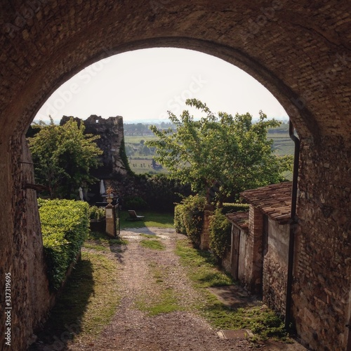 Fotografie, Tablou Archway Amidst Trees