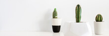 Three Cactuses In Pots Against A White Blank Wall. Copy Space. Geometric Flower Pot. White Shelf At Home. Panorama