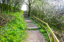 Old Wooden Steps Up To Towpath On Lancster Canal