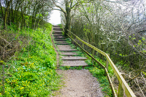 Fotomural Old Wooden Steps up to towpath on Lancster Canal