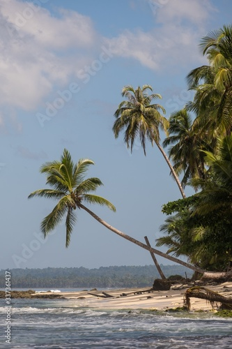 Tropical trees on the beach with white sand and turquoise clear water on the island in Indonesia