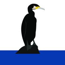 Cormorant Vector Bird On A Rock In The Sea Isolated