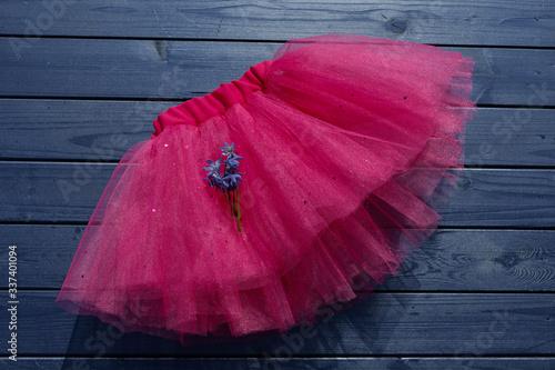 Fotografering Pink tutu skirt for girl on blue wooden background.