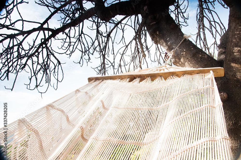 zdjęcie przedstawiające relaks w hamaku w słońcu wiosną