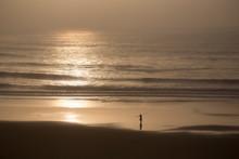 Ocean Sea Sunset Surf Beach
