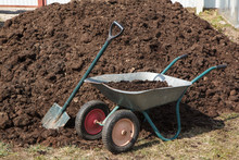 A Heap Of Horse  Manure With A...