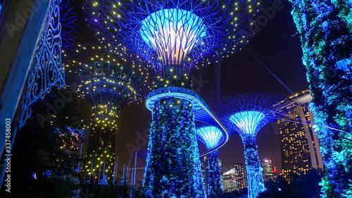 superbäume singapur Canvas Print