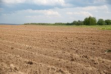 Closeup Of The Furrows Of The Recently Plowed Agricultural Field Against The Background Of Green Trees And A Cloudy Sky. Collective Farmers Waiting For The Appearance Of Young Sprouts Of Potatoes.