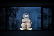 Teddy Bear At A Window As Part...