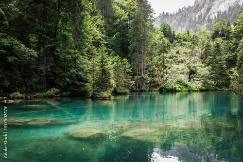 Fototapety, obrazy: Scenic View Of Lake In Forest