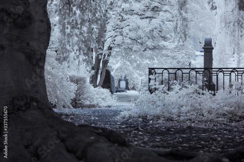Photo Frozen Water In Winter