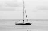 Sailboat Sailing On Sea Against Sky - 337564613