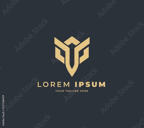 Foto dark warrior logo design vector
